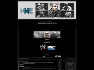 New Wrestling Entertainment
