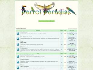 Parrot Lovers Paradise
