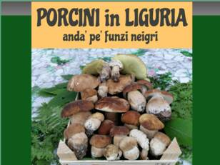 Forum gratis : Porcini In Liguria