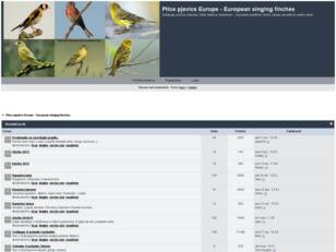 Free forum : Ptice pjevice - Singing finches