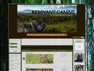 Remnant Canine