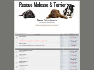 creer un forum : Rescue-Molosse&terrier