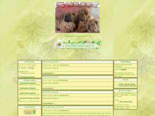creer un forum : shar pei en discussion
