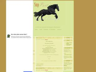 SupPort'Equid'Design