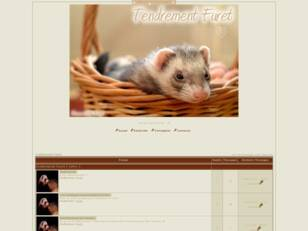 Tendrement-Furet