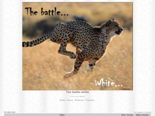 The battle white