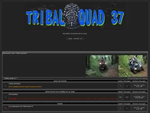 TRIBAL QUAD 37