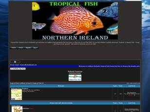Tropical Fish Forum Northern Ireland | Tropical Fish NI