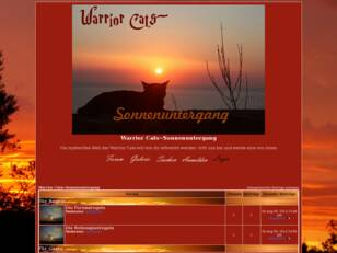 Warrior Cats~Sonnenuntergang