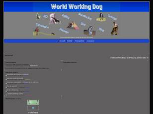 WORLD WORKING DOG