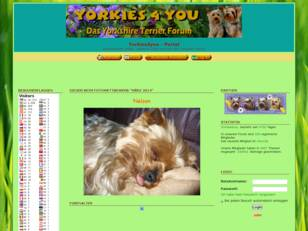Yorkshire Terrier Forum - Yorkies4you