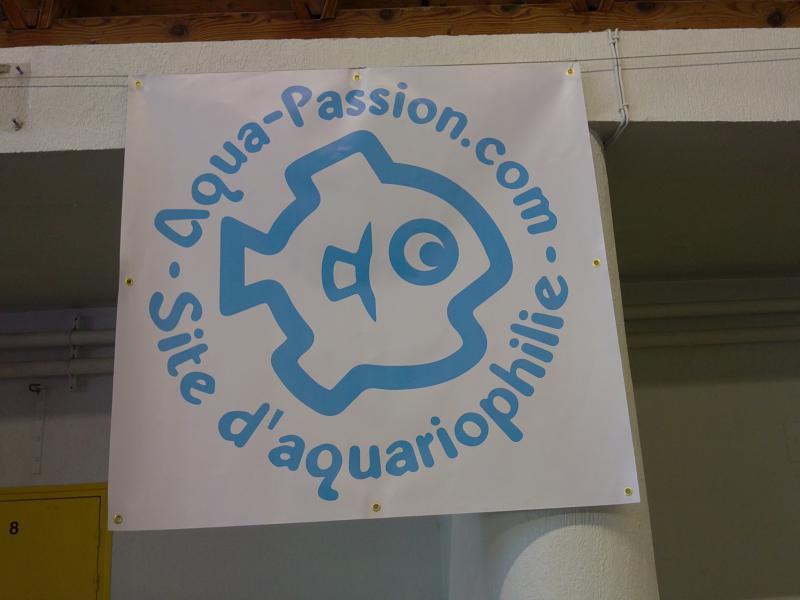 Bourse aquariophile et terrariophile le 23 Mai 2010 à Villers Bretonneux 11223023052010044