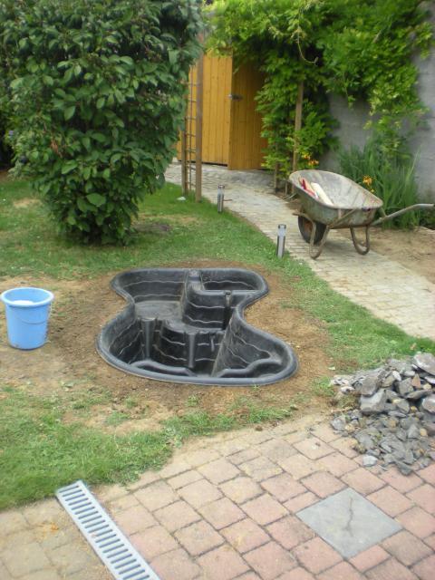 bassin pour tortue d eau 118414DSCN1100