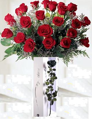 Mariage Caro Oli 149299rose_caro