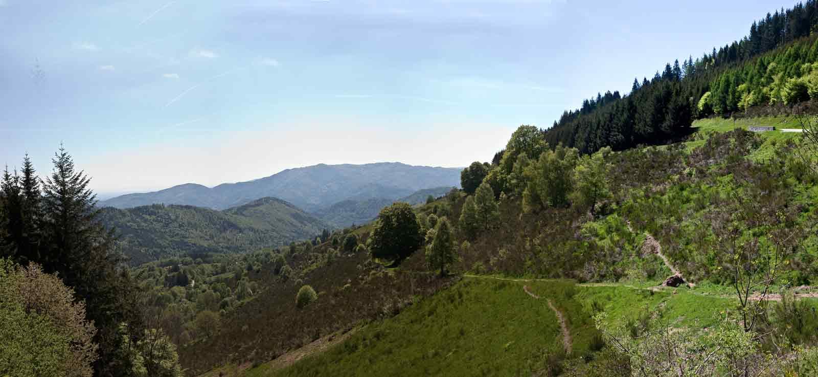 panorama des Vosges 185232Panorama_Gold2