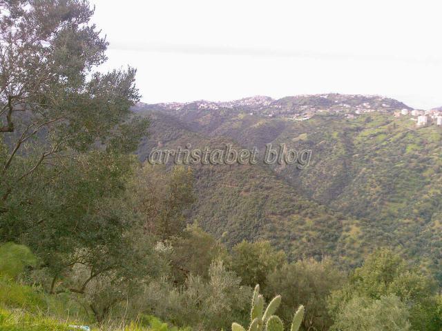De belles photos de Tizi ouzou et les montagnes de Djurdjura 229229Photos_0054