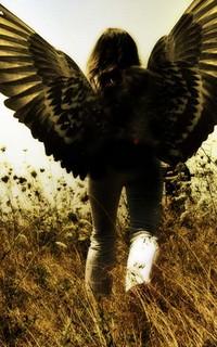 Esprits Angeliques