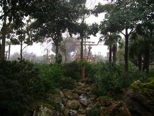 [Disneyland Paris] Premier séjour au DLH (31 janv.-2 fév. 2011) + un anniversaire inoubliable ! - Page 2 24071032