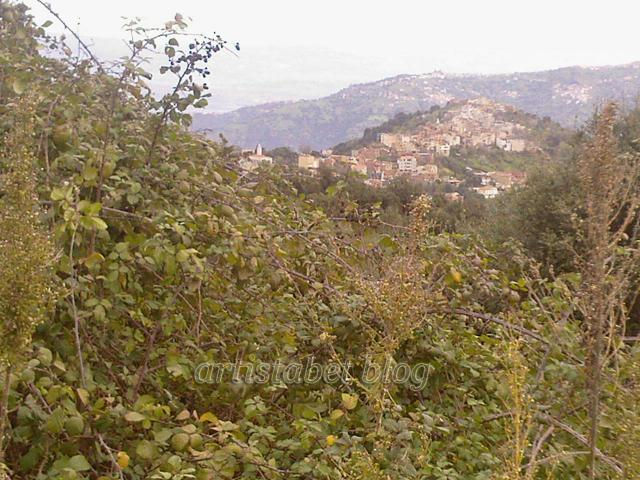 De belles photos de Tizi ouzou et les montagnes de Djurdjura 248068Photos_0062