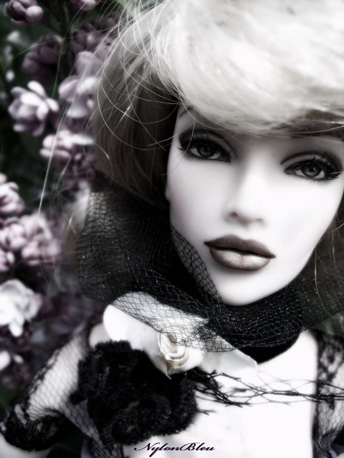 Claudine à l'ombre des Lilas... 313101bDSCF7473
