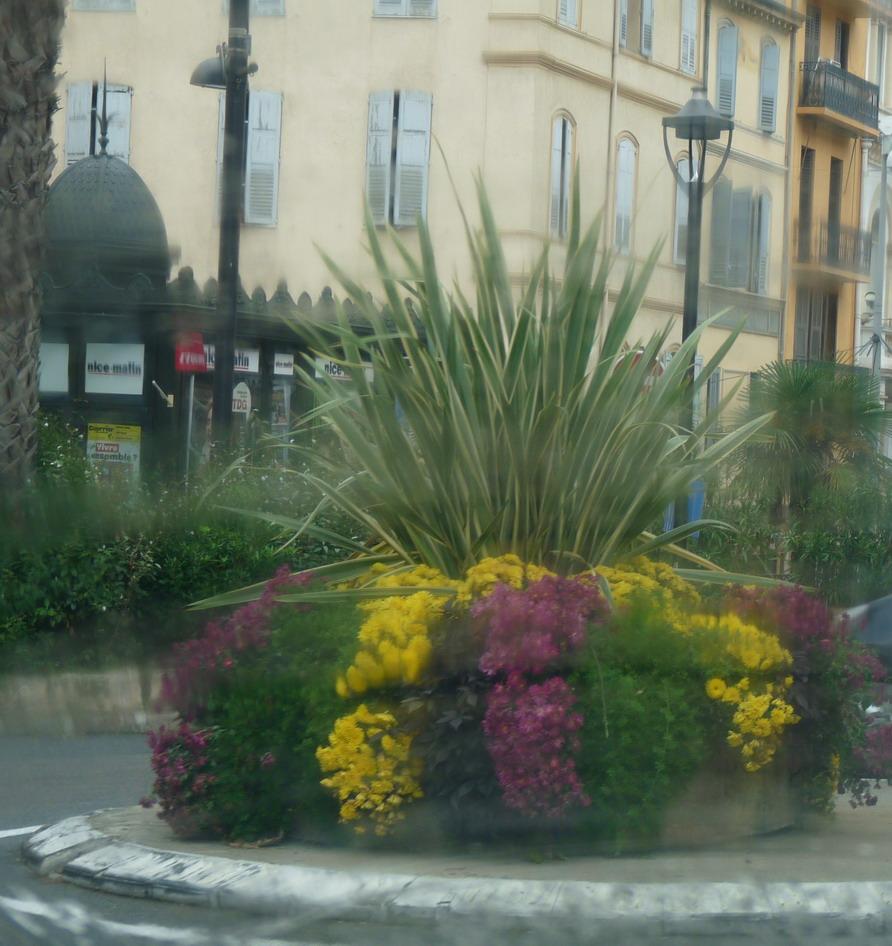 A GRASSE..... MARSEILLE CONSOLAT A  RESSENTI LE PARFUM DE LA VICTOIRE !!!! 357159P1130059jpg
