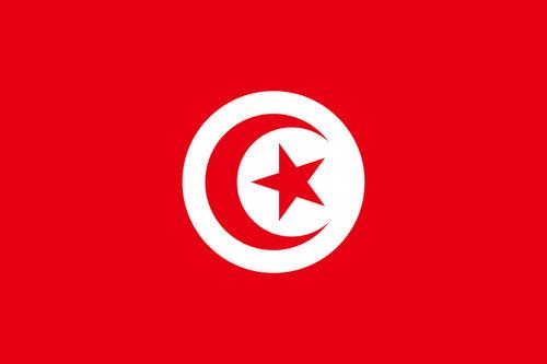 Armée Tunisienne. 364022tunisie