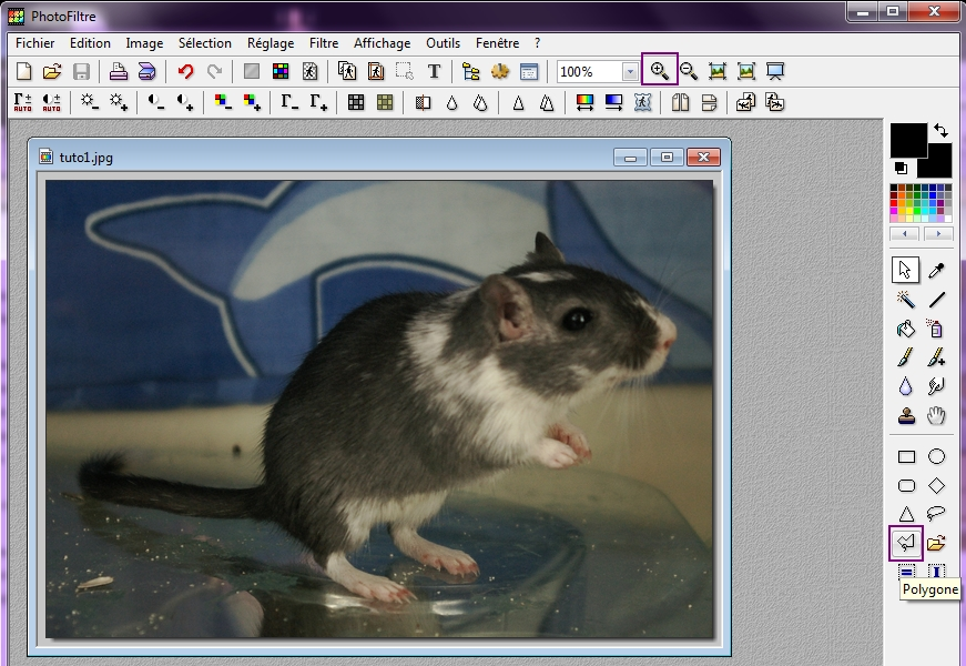 Tuto - découper avec photofiltre 400862tuto2