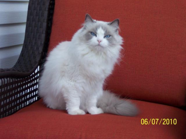 Tessa en photos 41811Tessa6