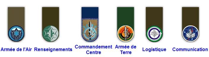 Badge et insigne de Tsahal. 493341Sans_titre_2