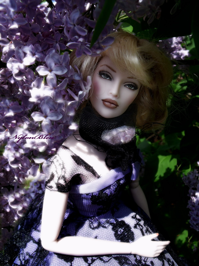 Claudine à l'ombre des Lilas... 513441aDSCF7498