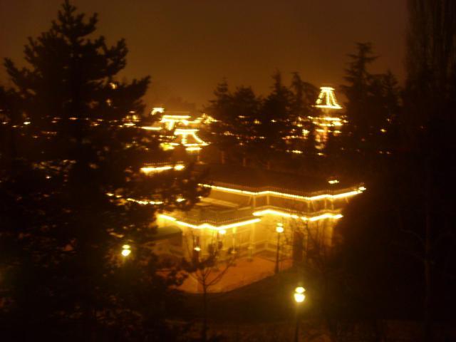 [Disneyland Paris] Premier séjour au DLH (31 janv.-2 fév. 2011) + un anniversaire inoubliable ! - Page 4 584119157