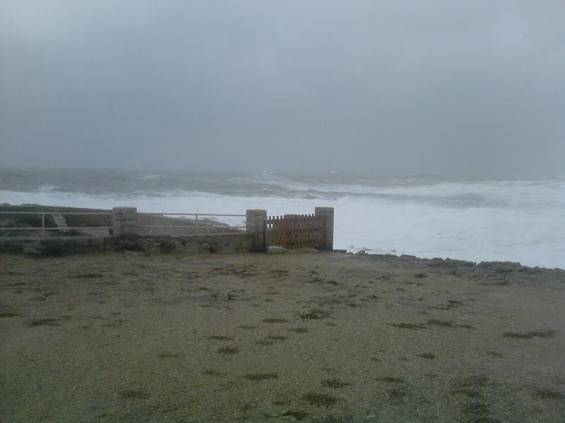 Tempête 24 fevrier dans le Morbihan 594243P240210_14.47__01_