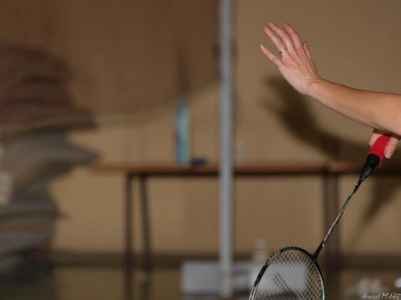 Badminton Tournois Régional Janvier 596213P1311865