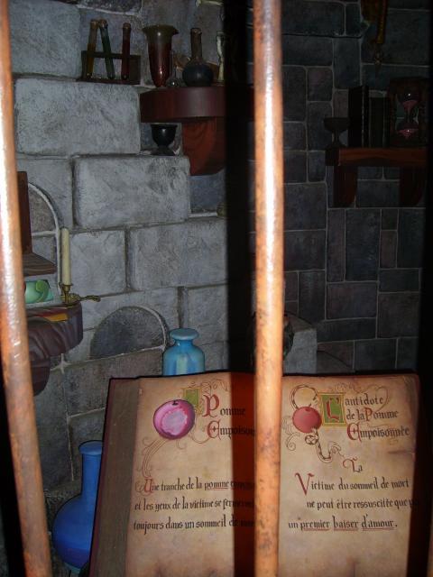 [Disneyland Paris] Premier séjour au DLH (31 janv.-2 fév. 2011) + un anniversaire inoubliable ! - Page 2 63601127