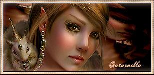 halloween - Page 4 699907signature_elfe_ecureuil_saturnella