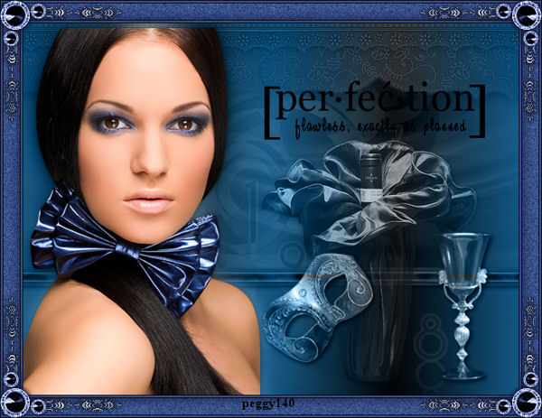 perfection 78519Image1