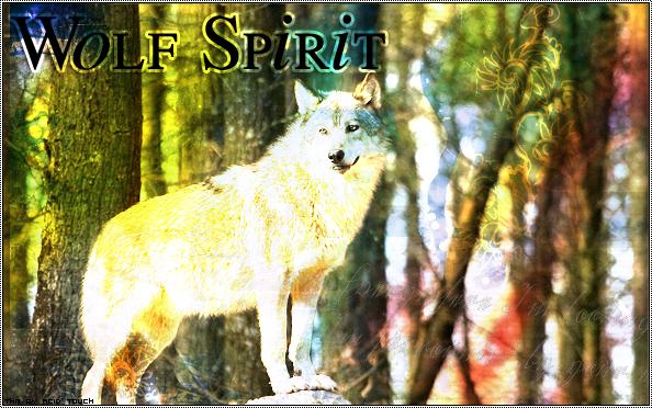 •• # Wolf Spirit # ••