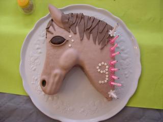 cheval, zèbre et licorne - Page 5 799310DSCN4976