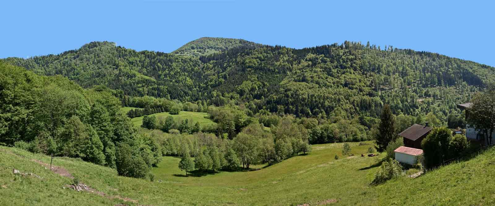 panorama des Vosges 819572Panorama_Gold1