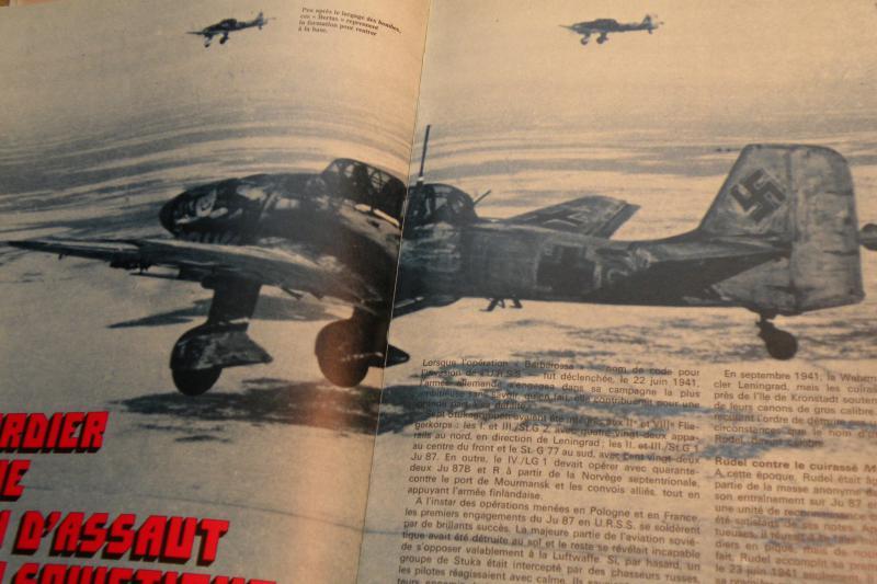 Stuka Heller ex Airfix  1/48 821310DSCN0607