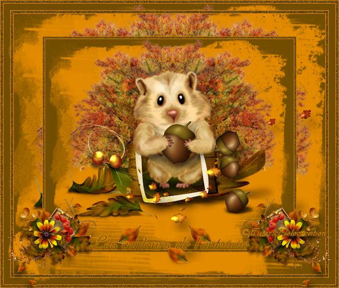 Tag les couleurs de l'automne 834209les_couleurs_d_automne