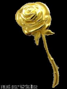 Bijoux divers Mini_139938rose_doree2