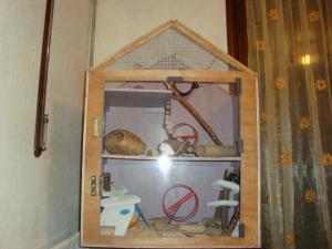 Vos cages : les photos [PAS DE COMMENTAIRES] - Page 3 Mini_801846DSC00452