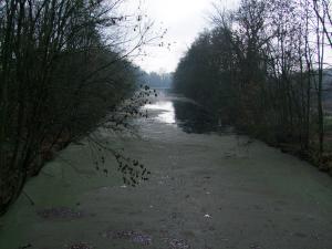 canal d'arnaville Mini_983629DSCF2434JPG
