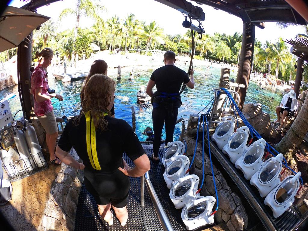 Une lune de miel à Orlando, septembre/octobre 2015 [WDW - Universal Resort - Seaworld Resort] - Page 9 1133091000069