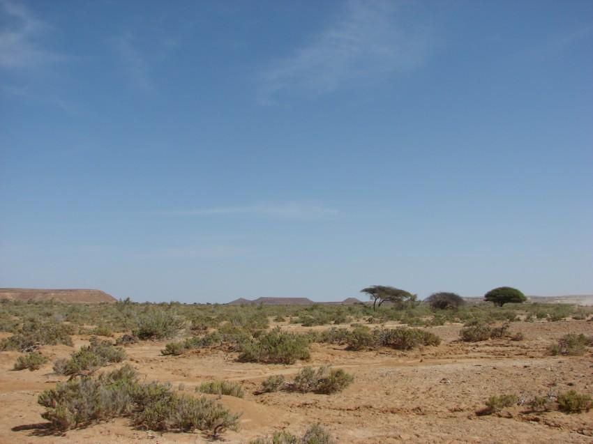 retour maroc 2012 - Page 2 116905052