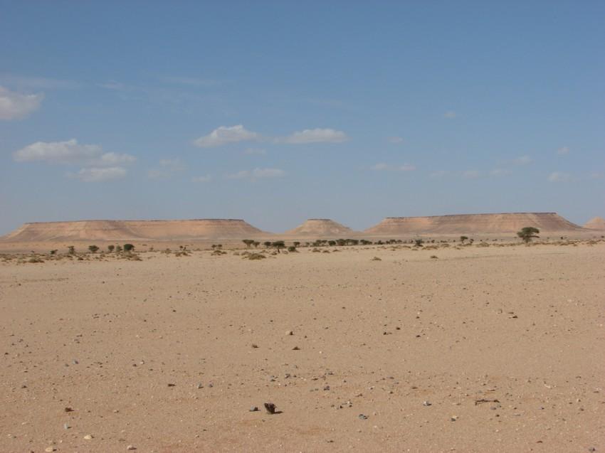 retour maroc 2012 - Page 2 119022102