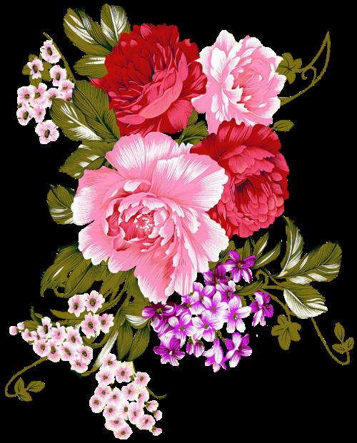 Tubes roses 12116566b85215