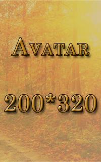 200*320