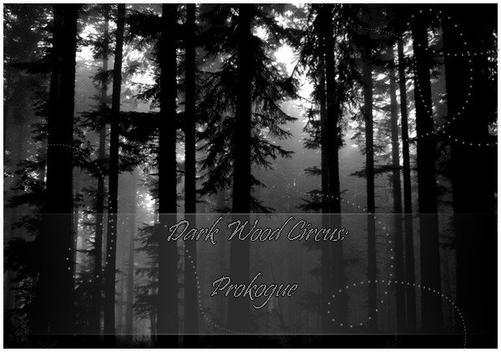 Partie 12: Dark Wood Circus → Intro (1/2) 12815205wirskyrocknet